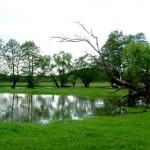 Comuna Balta - Primăvara și apele din lunci